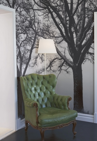 Sitting in a Tree Photo Wall Art