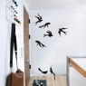 Birds - Wallsticker