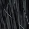 Bamboo - Dark