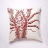 Lobster (56cm)